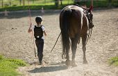 Young girl walks with her horse friend