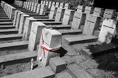 polish flag on the soliders graves in Vilnius Lithuania