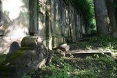 Old abandoned Jewish cemetery