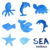 Blue hand drawn watercolor painted sea animals set. Vector illustration of dolphin, octopus, fish, whale, shark, sea star and shell.
