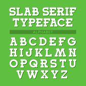 Slab serif typeface, font, alphabet. Vector.