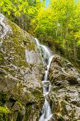 Moosehorn Trail Falls