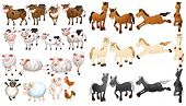 Illustraion of many type of farm animals