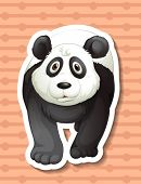 Illustration of a closeup panda