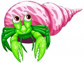 image of hermit  - Illustraion of a single hermit crab - JPG