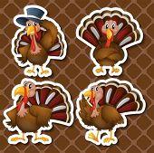 Illustration of a set of turkeys