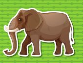 Illustraion of a single elephant with background