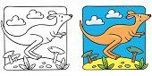 Little kangaroo coloring book