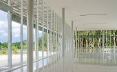 Glass Wall In The Building With Nature Background