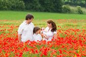 Happy Young Family With A Son And A Newborn Daughter Standing In A Beautiful Poppy Flower Field