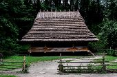 Camping in the Carpathians