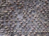 Pattern Of Exposed Brick - Rough Texture Backgrounds