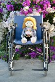 Old cloth dolls sitting on wheelchair with flower bush in background