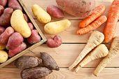 Variety Of Winter Vegetables