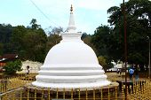 Buddhist Stupa, Temple of the tooth