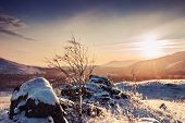 Fantastic Winter Landscape At Sunset
