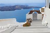 view of volcano caldera with stairs, Santorini