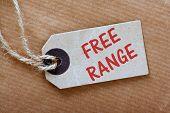 Free Range Price Tag