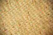 Bamboo plexus background texture