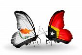 Two Butterflies With Flags On Wings As Symbol Of Relations Cyprus And East Timor
