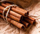 Cinnamon Sticks Bunch