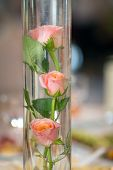 stock photo of centerpiece  - Wedding reception centerpiece close - JPG