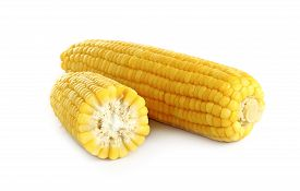 image of sweet-corn  - ears of corn on white background closeup - JPG