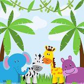 image of jungle  - Safari - JPG