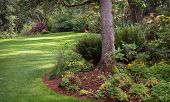 ������, ������: Garden Park