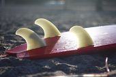 pic of fin  - Surfboard fins backlit by the evening sun - JPG