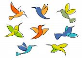 pic of hummingbirds  - Colorful hummingbirds symbols in different poses for business icon or emblem design in sketch style isolated on white background - JPG