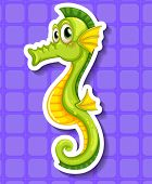 pic of seahorse  - Closeup happy seahorse on purple background - JPG