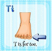 picture of toe nail  - Flashcard letter T is for toe - JPG