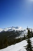 Scenic mountain landscape with snow in Whistler, British Columbia, Canada.