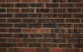 Erie Brick Wall