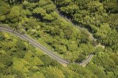 Aerial of winding scenic highway with trees in rural California, USA.