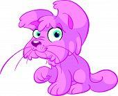 lindo gato rosa