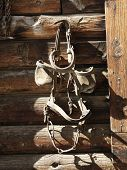 Bridle with blinders hanging on an old weathered wooden stable.