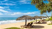 Beach Beds With Umbrellas On The Tropical Beach In Sri Lanka. Panoramic View Of A Sand Beach With Pa poster