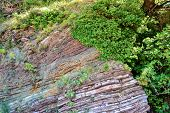 A Tree On A Rock. Texture Of The Rock. Large Rocks Exfoliate From The Rock. poster
