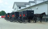 stock photo of mennonite  - parked amish buggies at the market - JPG