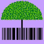 Barcode Eco