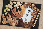 Chinese alternative medicine with herb selection and calligraphy script on rice paper. Translation r poster