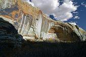 Escalante Cliffs With Fall Colors
