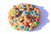 Big Close Up of a Fresh Baked Cookie with colorful candy coated chocolate drops. Isolated on white w poster