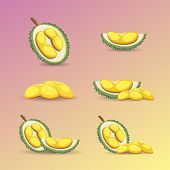 Halves Of A Durian Fruit On A Purple Background. Mature Durian Fruit Or A Smelly Fruit And Called Ki poster