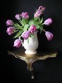 Tulips In A White Vase