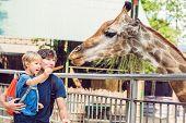 Постер, плакат: Father And Son Watching And Feeding Giraffe In Zoo Happy Kid Having Fun With Animals Safari Park On
