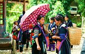 Black Hmong Vietnam