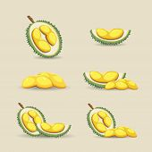 Halves Of An Exotic Durian Fruit On A Light Background. Mature Durian Fruit Or A Smelly Fruit Called poster